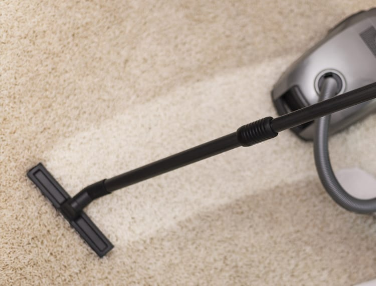 Carpet Cleaning Leads header image