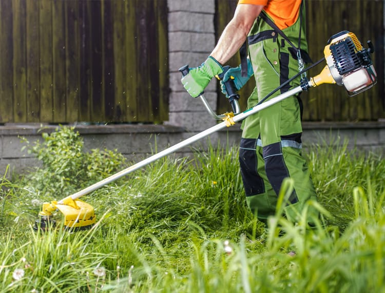 Landscaping & Lawn Care Leads header image